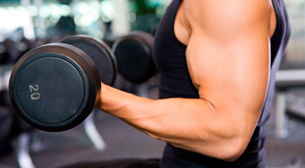 Aplicaciones para hacer musculación